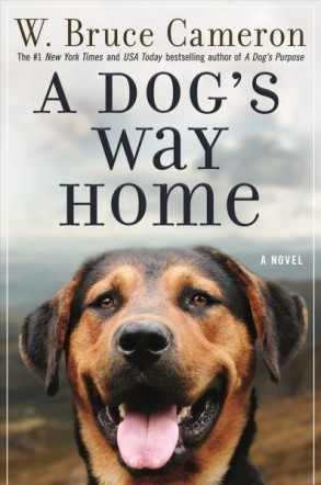 adogswayhome-book